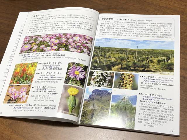 画像: 「ワイルドフラワー」 著者オークリー今日子さん ガイドブック内(イメージ) ※全93ページオールカラーで写真はどれも美しく、解説もとてもわかりやすいです