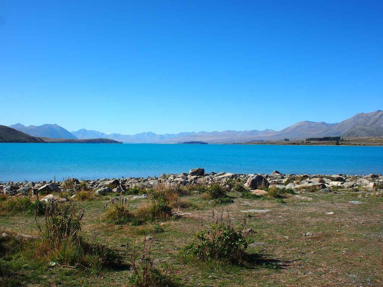 画像: ミルキーブルーに輝くテカポ湖(弊社スタッフ撮影) 氷河粉という氷河が動く際に削り出される岩石の成分が水に溶け込む事でこのブルーが作り出されているのです。まさに 「自然が創りだした芸術」 。