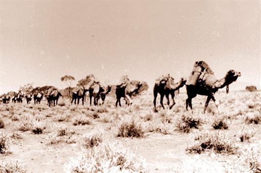 画像: ラクダの隊列(列車内の展示物より/イメージ)