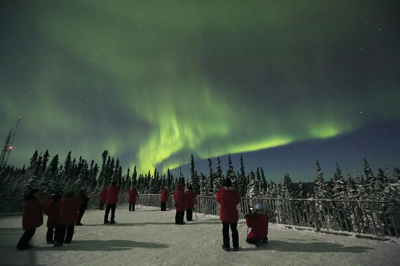 画像: アラスカのオーロラ©A&P Tours
