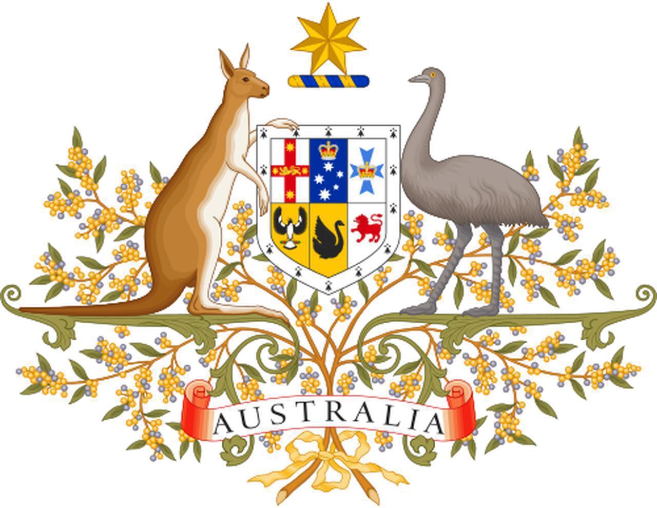 画像2: キュン死注意!ふわふわモフモフ大集合!<第5回>「もうひとつのオーストラリア編」【好奇心で旅する海外】<来た来た!アニマル>