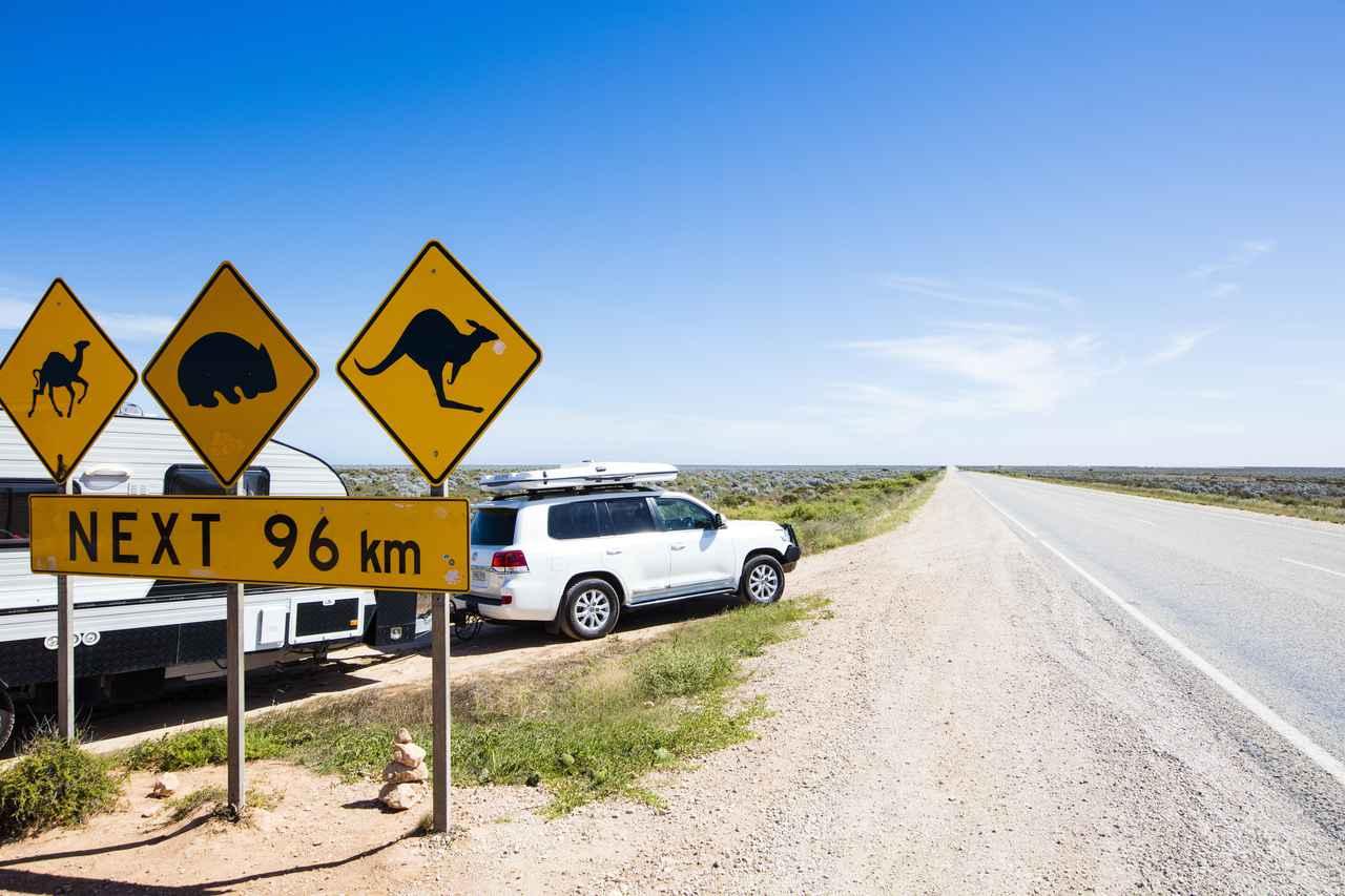 画像: 「野生動物に注意」の標識 大陸横断道路/イメージ(©Sean Scott Photography)