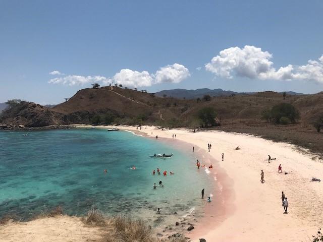 画像5: 【インドネシア】東南アジア最後の秘境!! コモド諸島にコモドドラゴンを見に行きませんか!?