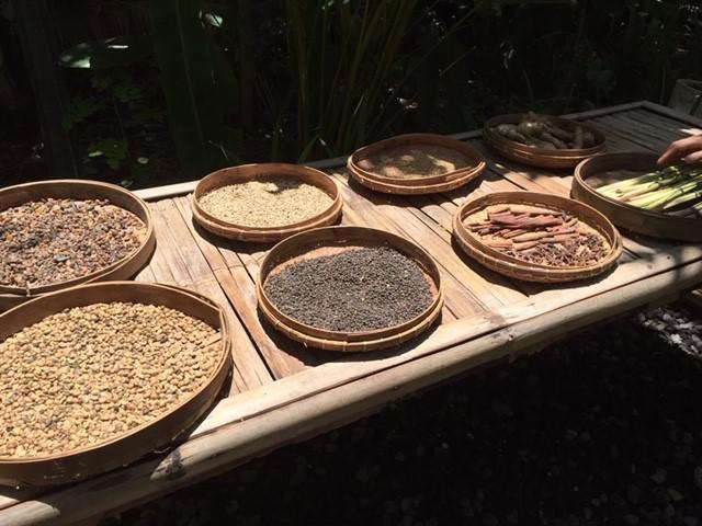 画像: コーヒー豆の乾燥/弊社スタッフ撮影