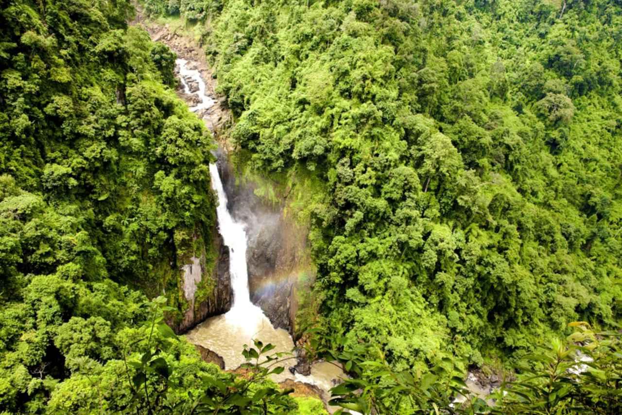 画像2: カオヤイ国立公園(写真提供:タイ国政府観光庁)