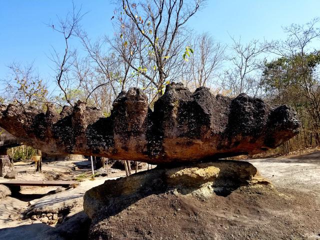 画像: サンゴのような…こちらも不思議な形の岩!(2019年1月弊社スタッフ撮影)