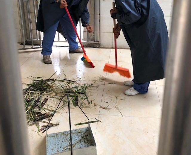 画像: パンダの小屋掃除(水野撮影/2018年6月)