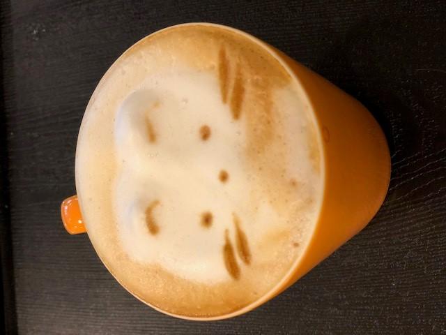 画像: 猫のコーヒー/水野撮影