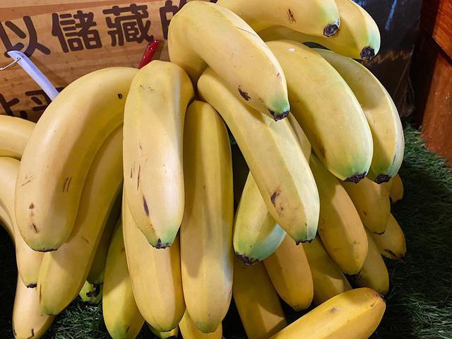 画像: 集集でとれたバナナ/弊社スタッフ撮影(2020年2月)
