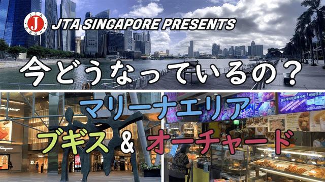 画像: シンガポール マリーナエリアをドローン撮影‼ ブギスやオーチャードは「今」どうなっている?? (提供:現地手配会社JTA/2020年7月17日撮影) www.youtube.com