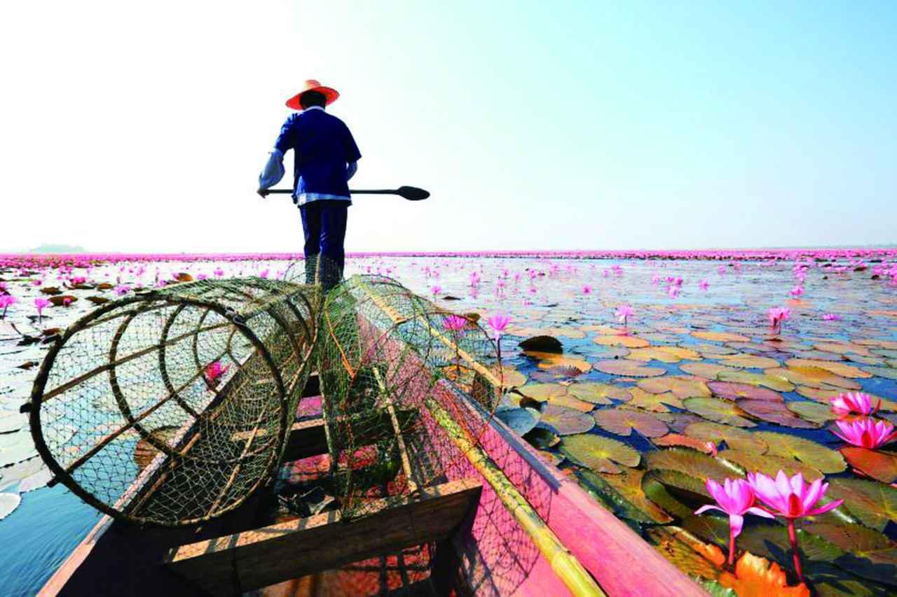 画像: 【タイ】東北部おすすめ観光地のご紹介~ナコン・ラーチャシーマー、ウドンタニなど~ - クラブログ ~スタッフブログ~|クラブツーリズム
