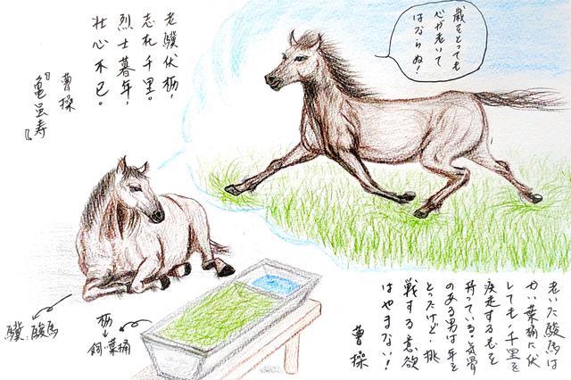 画像: 老いた駿馬は飼い葉桶に伏すとも、志が千里にある ~老驥伏櫪、志在千里