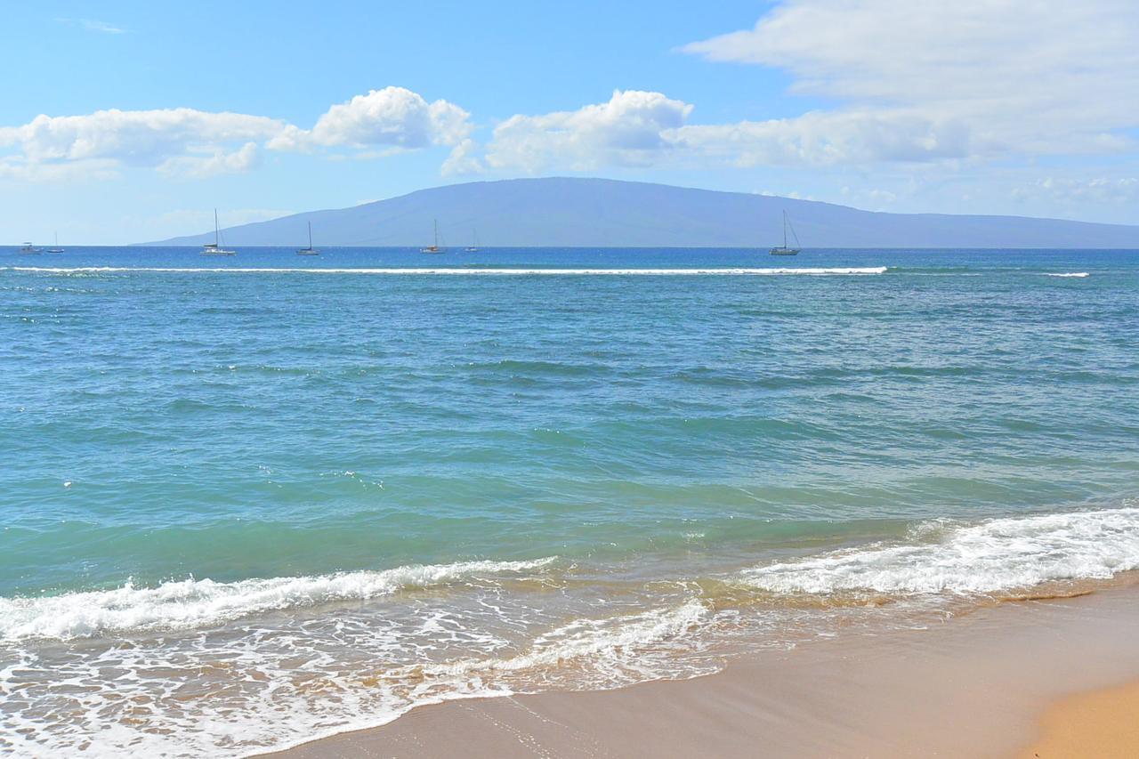 画像: 海岸線には美しい海が広がっています