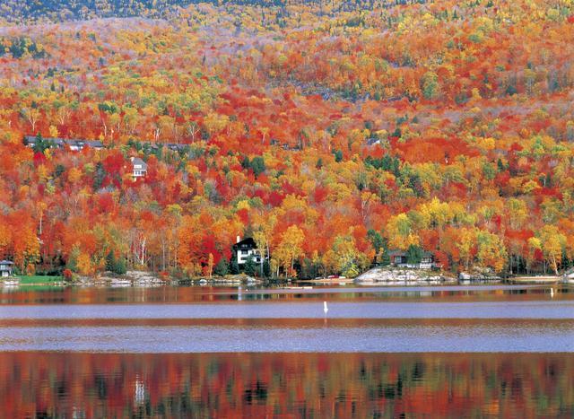 画像: トレンブラン湖クルーズ
