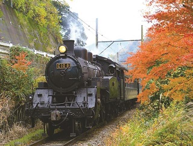 画像: 大井川鐵道SL(イメージ)