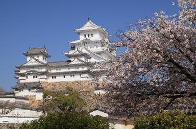 画像: 姫路城(お客様写真/今田 裕様:兵庫県在住)