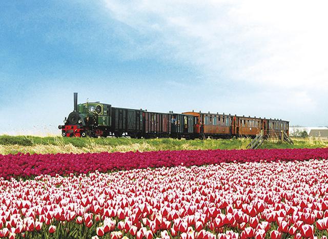 画像: 花畑を走る蒸気機関車(イメージ)