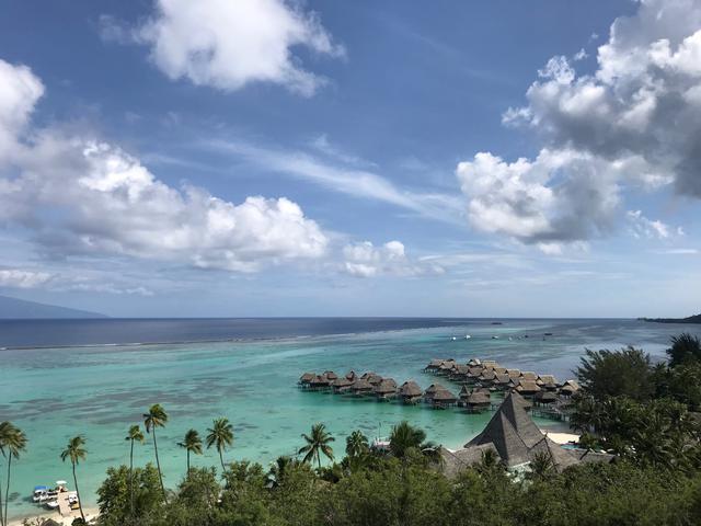 画像: モーレア島の水上コテージ(イメージ:田邊撮影)