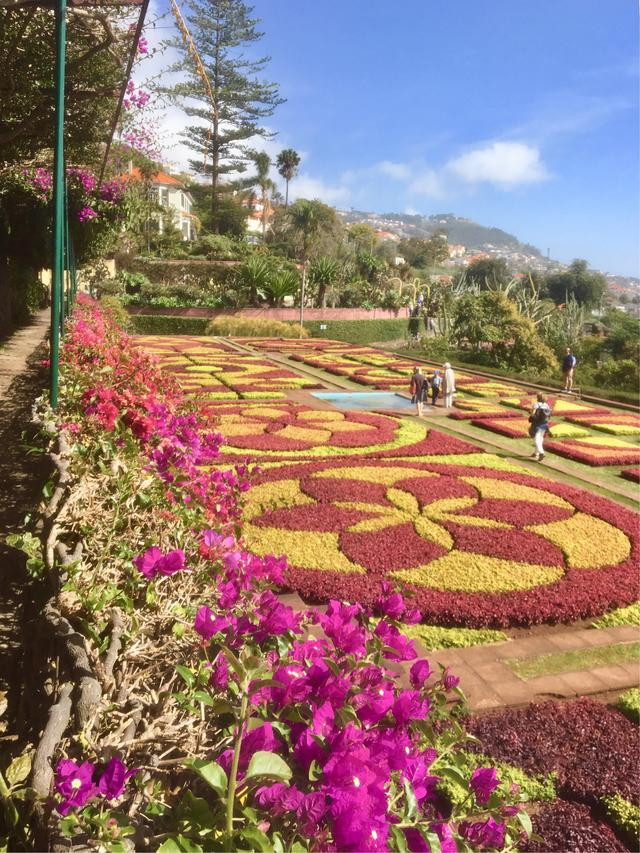 画像: ボタニカルガーデン(イメージ) ※花の見ごろは前後する可能性がございます