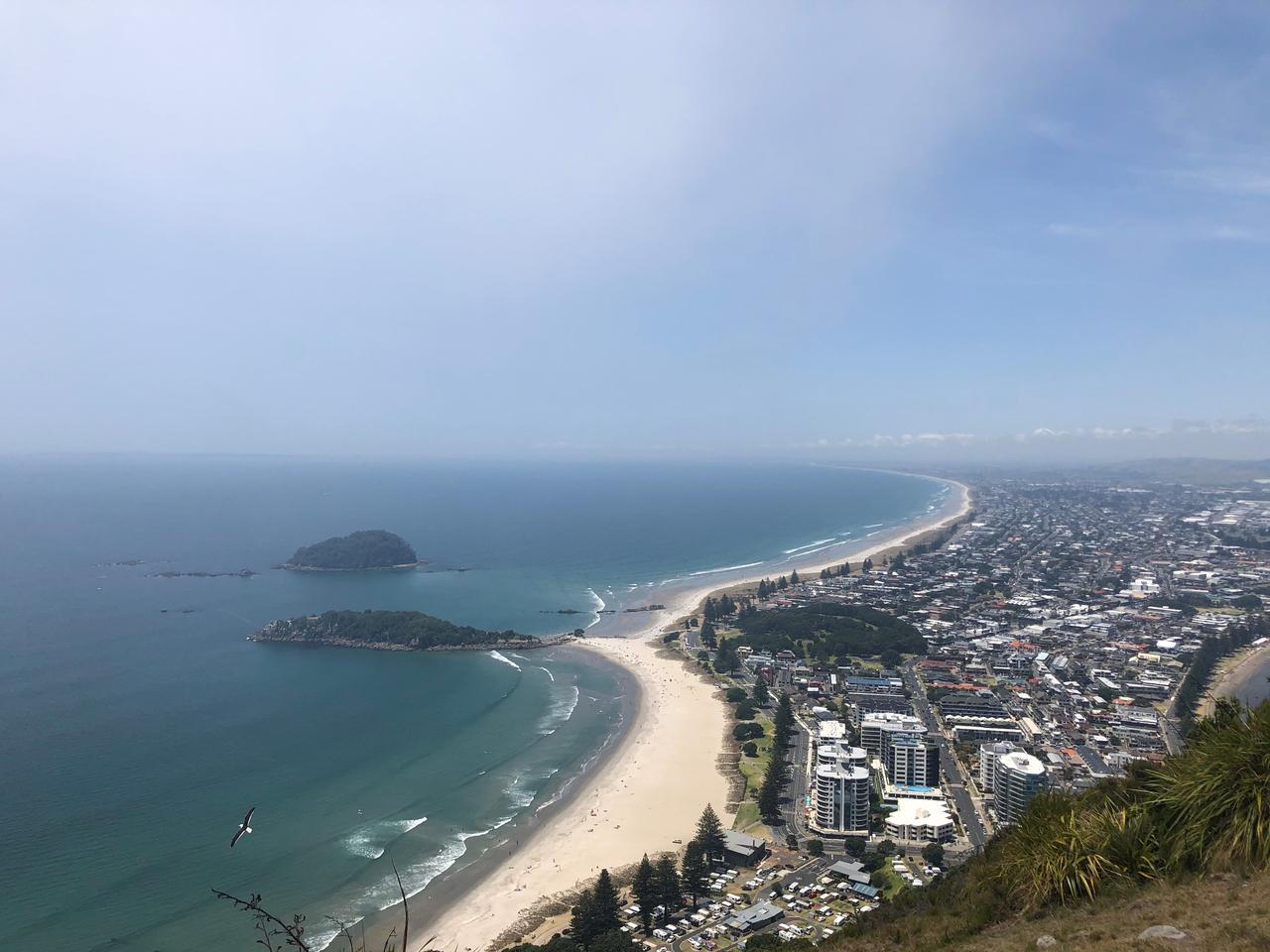 画像1: タウランガ・マウンガヌイ山からの眺め/鈴木撮影(イメージ)