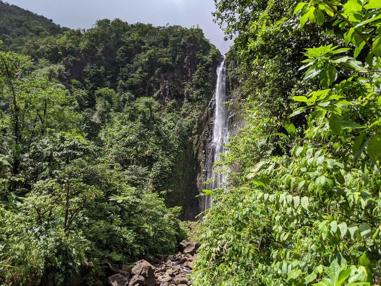 画像: グアドループ国立公園内の滝/齋藤撮影