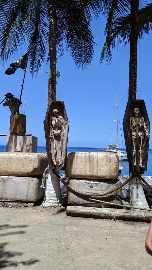 画像3: 【クルーズの旅/添乗日記】南カリブ海の秘境!小アンティル諸島の国々に行ってきました!