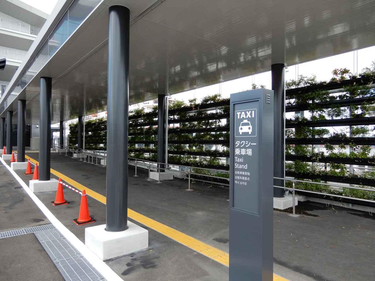 画像: 東京国際クルーズターミナル タクシー乗降場(弊社スタッフ撮影)