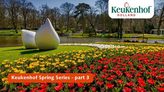 画像: Keukenhof Spring Series part 3 | Keukenhof 2021 youtu.be