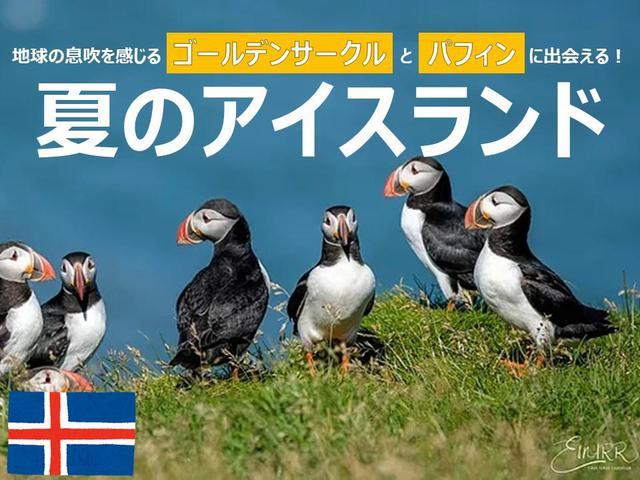 画像: <オンラインツアー>『地球の息吹を感じるゴールデンサークルとパフィンに出会える!夏のアイスランド』|クラブツーリズム