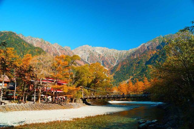 画像: 晩秋の河童橋 例年の見頃:10月中旬~下旬