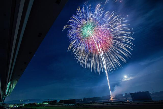 画像: 京都芸術花火だからこそ! ここが見どころポイント