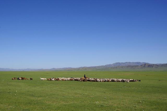 画像: モンゴルの大草原