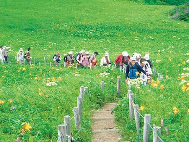 画像: 桃岩展望台へのハイキングの様子(イメージ)