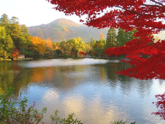 画像: お客様作品:羽賀 道行様(東京都在住) 紅葉の金鱗湖