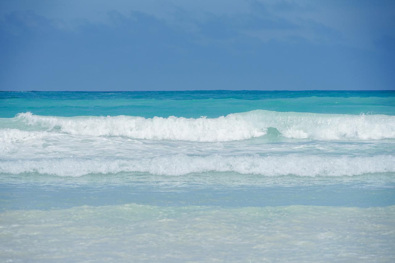 画像: サンタクルス島のビーチ(イメージ)