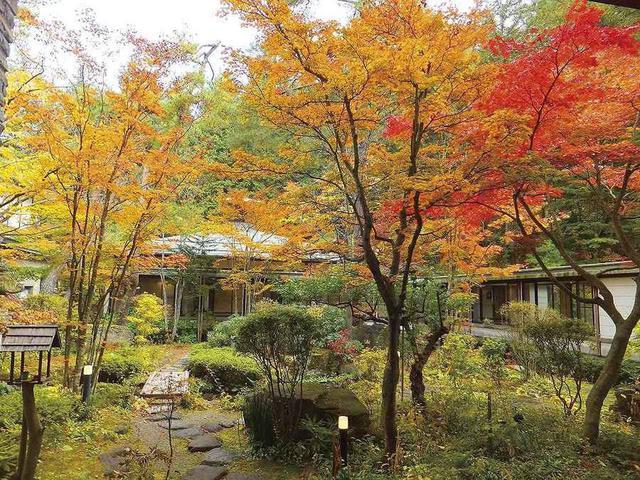 画像: 紅葉の庭園(イメージ)