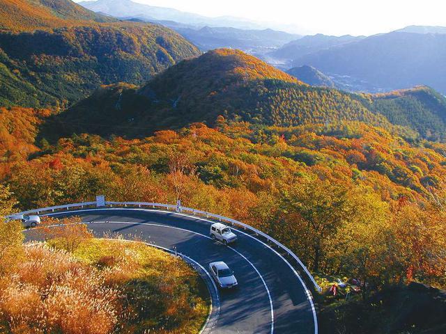 画像: 紅葉に彩られたいろは坂/イメージ