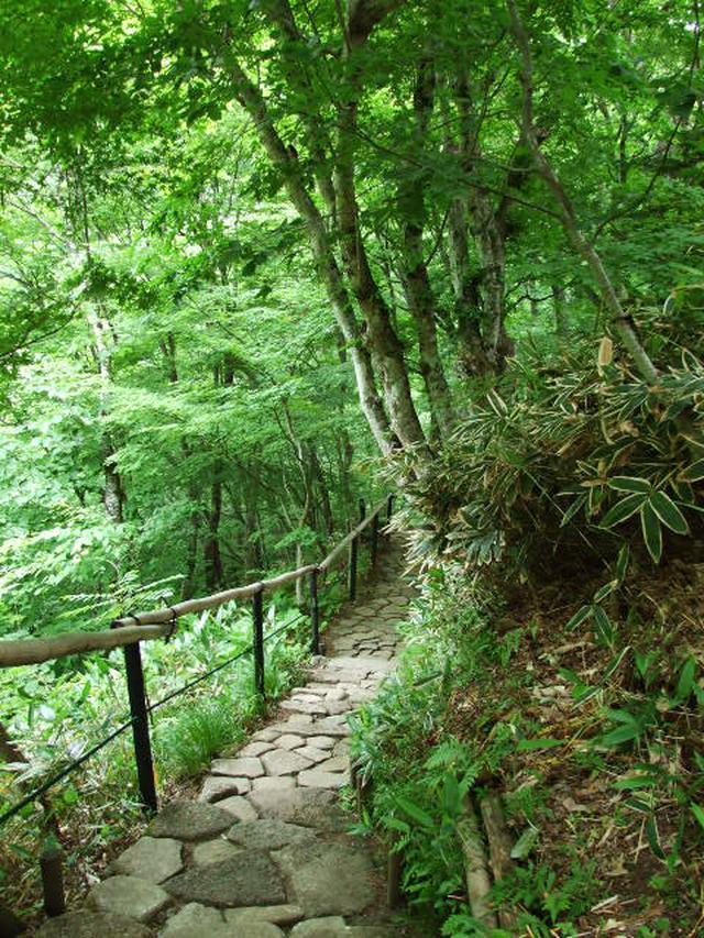 画像: 故・鈴木政夫(彫刻家)命名の散策路・ふれあいの道(イメージ)