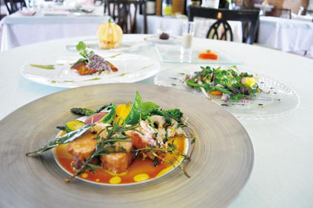 画像: ラ・ネージュ東館 夕食(イメージ) 信州や日本海の新鮮な素材を吟味した、創作フレンチに舌鼓。