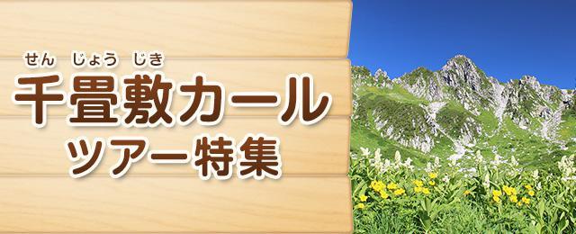 画像: 千畳敷カール旅行・ツアー【東京発】│クラブツーリズム