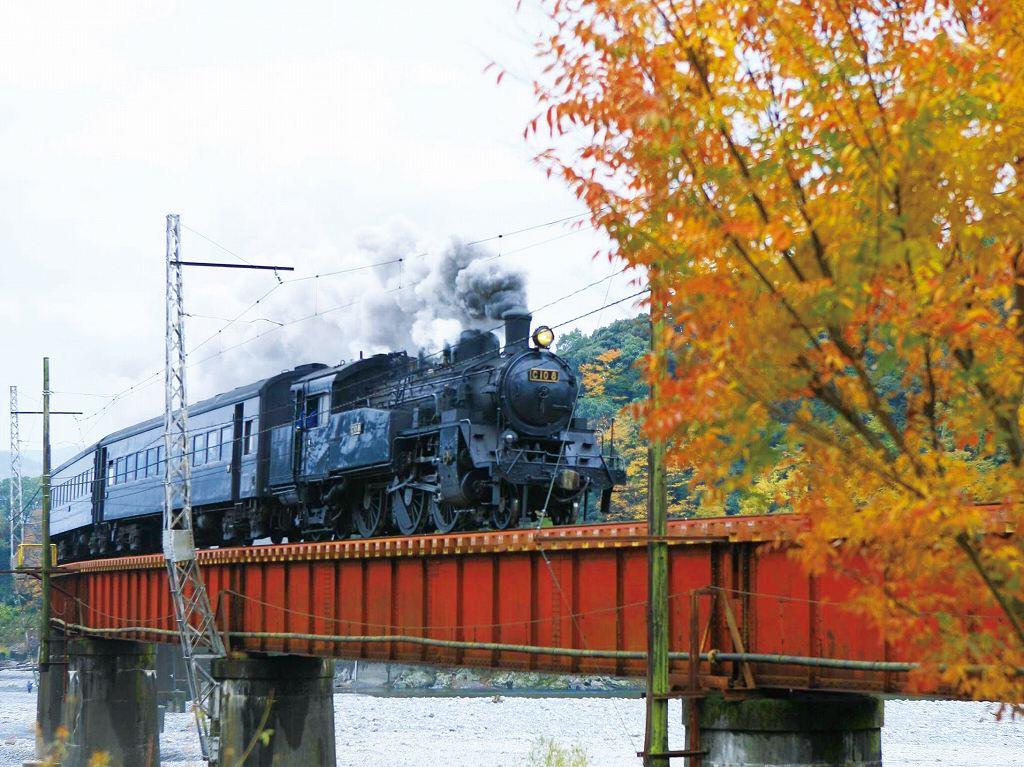 画像: 『季秋の大井川鐵道SL列車と「日本平ホテル」ゆったり18時間滞在2日間』【東京・新宿出発】<四季の華/19名様以下>|クラブツーリズム