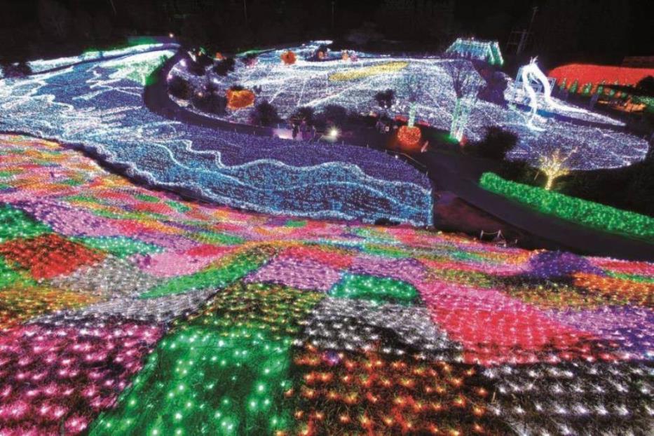 画像: 『圧巻のイルミネーション「グランイルミ」 クラシックホテル「川奈ホテル」2日間』【東京・新宿出発】<四季の華/19名様以下>|クラブツーリズム