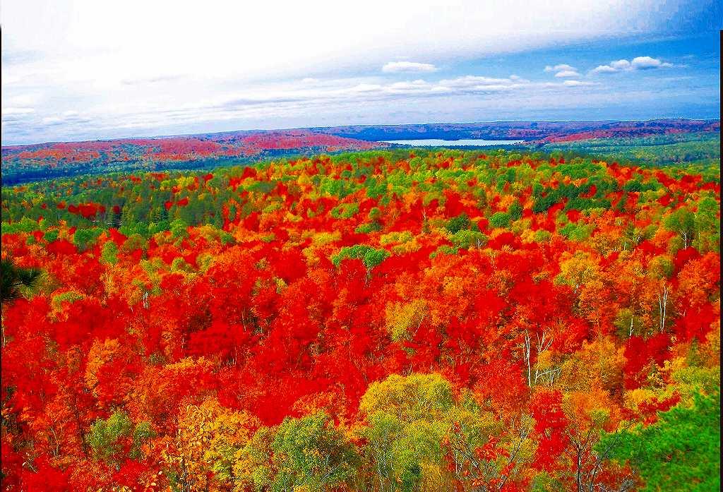 画像: 【26778】<ハイク初級>『秋のカナダ・メープル街道とカナディアンロッキーハイキング10日間』~アルゴンキン州立公園内に連泊~9/28発催行決定!|クラブツーリズム