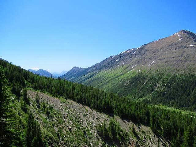 画像2: カナダのフラワーハイキング