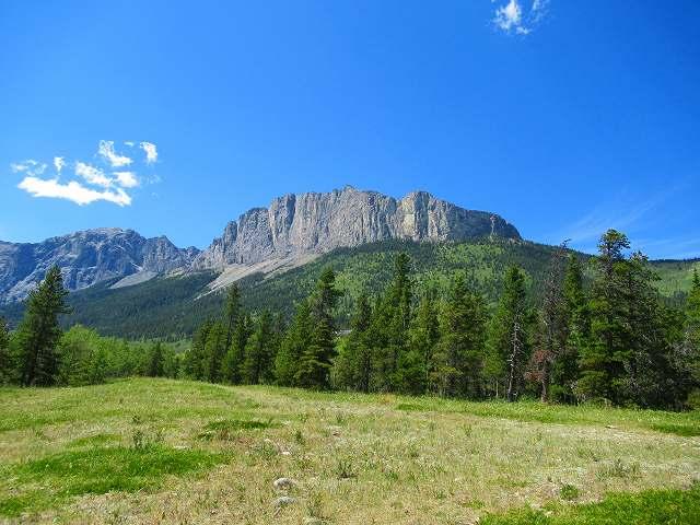 画像1: カナダのフラワーハイキング