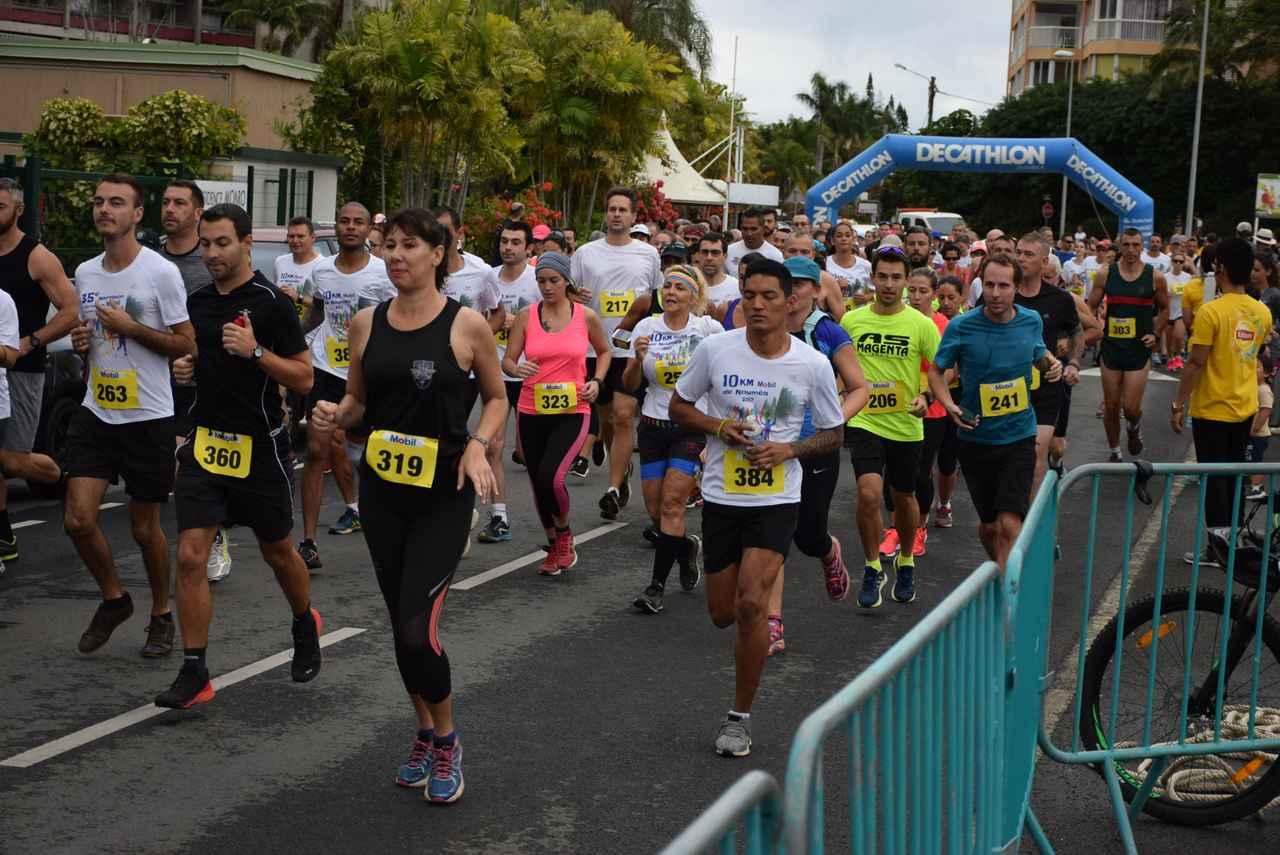 画像2: マラソンコースは平坦で走りやすい