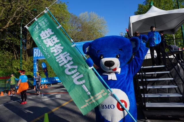 画像16: いよいよマラソン当日!フル・ハーフのスタートはビクトリアパーク