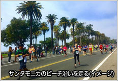 画像: ロサンゼルスマラソン|南北アメリカ|大会一覧から探す|地球を走ろう!マラソンツアー|スポーツ|クラブツーリズム
