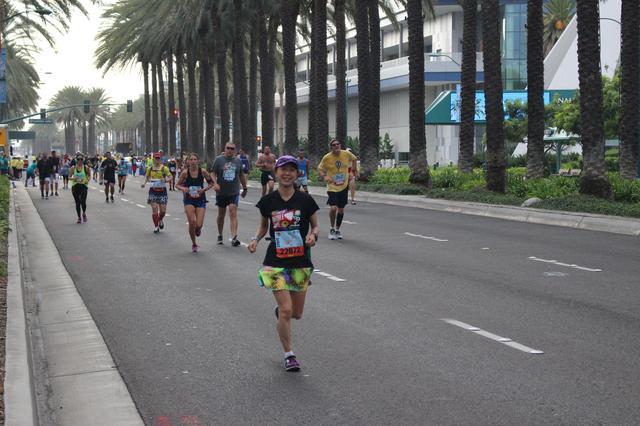 画像22: ディズニーランドハーフマラソンは、5キロ・10キロ・ハーフの3種目