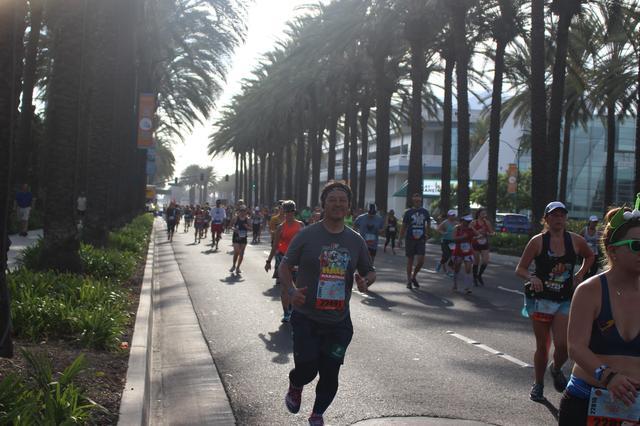 画像26: ディズニーランドハーフマラソンは、5キロ・10キロ・ハーフの3種目
